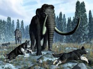 собаки 12000 лет назад